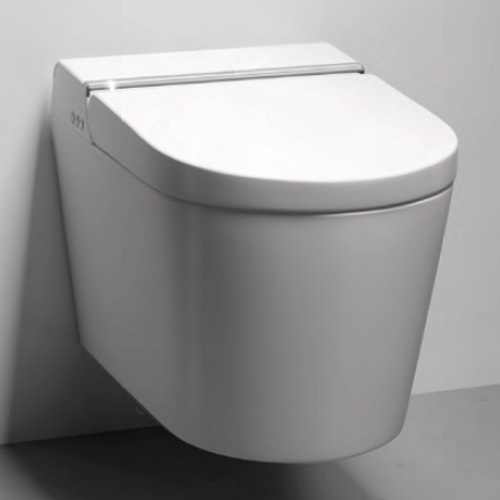 A NEW TOILET IS BORN: HYGEA Electronic toilet seat and bowl matt white satin glaze with remote control, IW-H20LMW